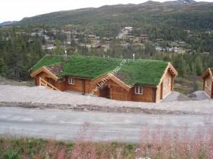 Дом «Soria Moria 2005»